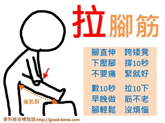 拉筋-大腿後側肌群|台中骨科蔡依樽醫師https://good-bone.com